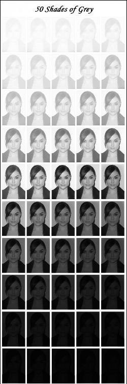 50 shades of Sasha Grey