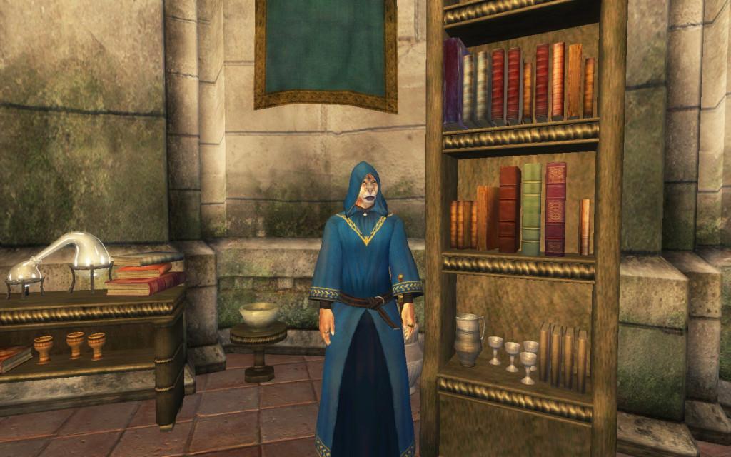 Il nuovo Arci-Mago nella sua biblioteca